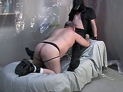 Beamy dude on his knees with an increment of giving a blowjob